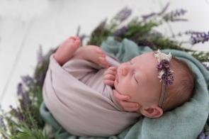 purple next baby girl